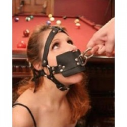 Harness Trainer Ball Gag with O-Ring Veil