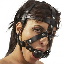 Leather harness with a gag mouth open