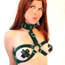 Large O-Ring Adjustable Collar-Breast Harness